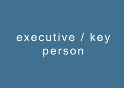 executive / key person