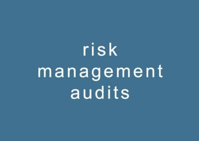 risk management audits